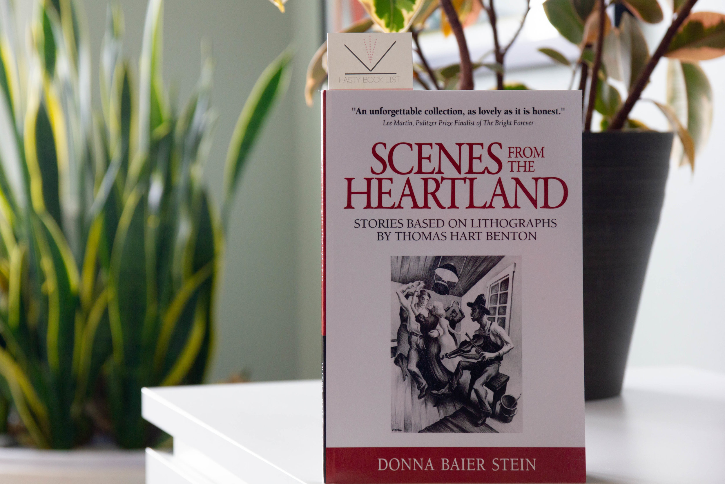Book Feature - Scenes from the Heartland by Donna Baier Stein