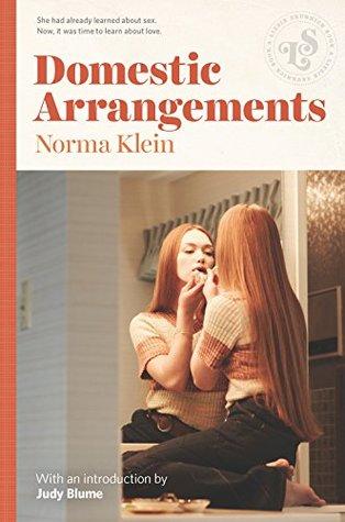 domestic arrangements by norma klein.jpg