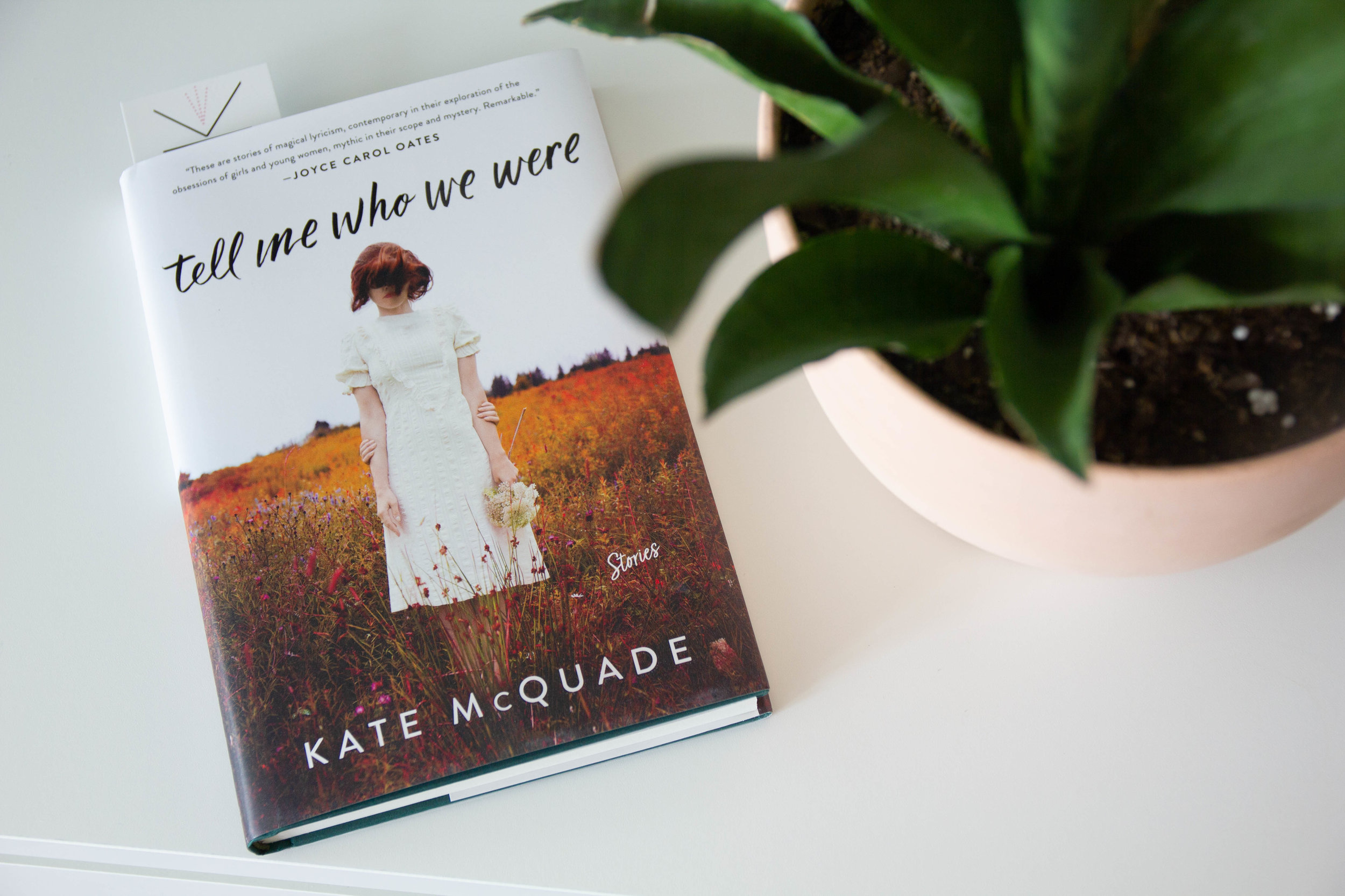 Book Feature - Tell Me Who We Were by Kate McQuade