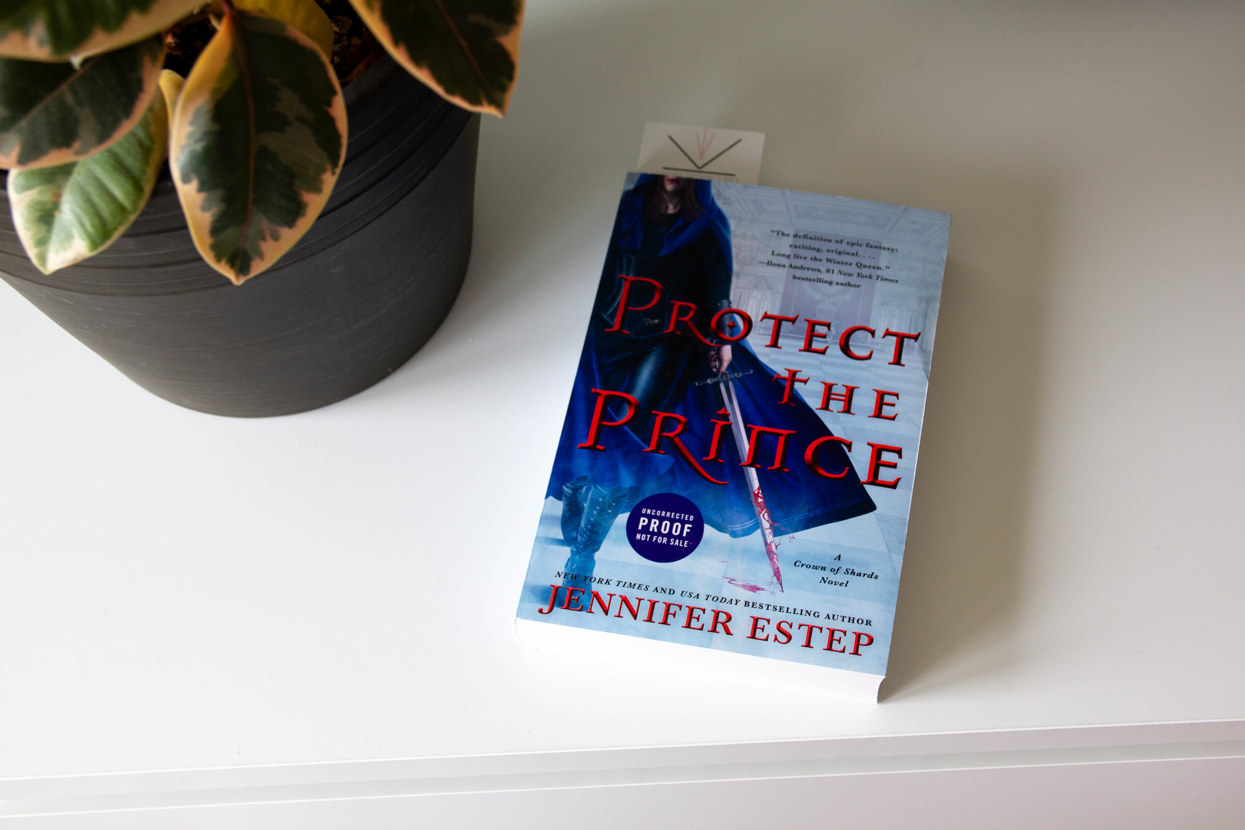 Book Feature - Protect the Prince by Jennifer Estep