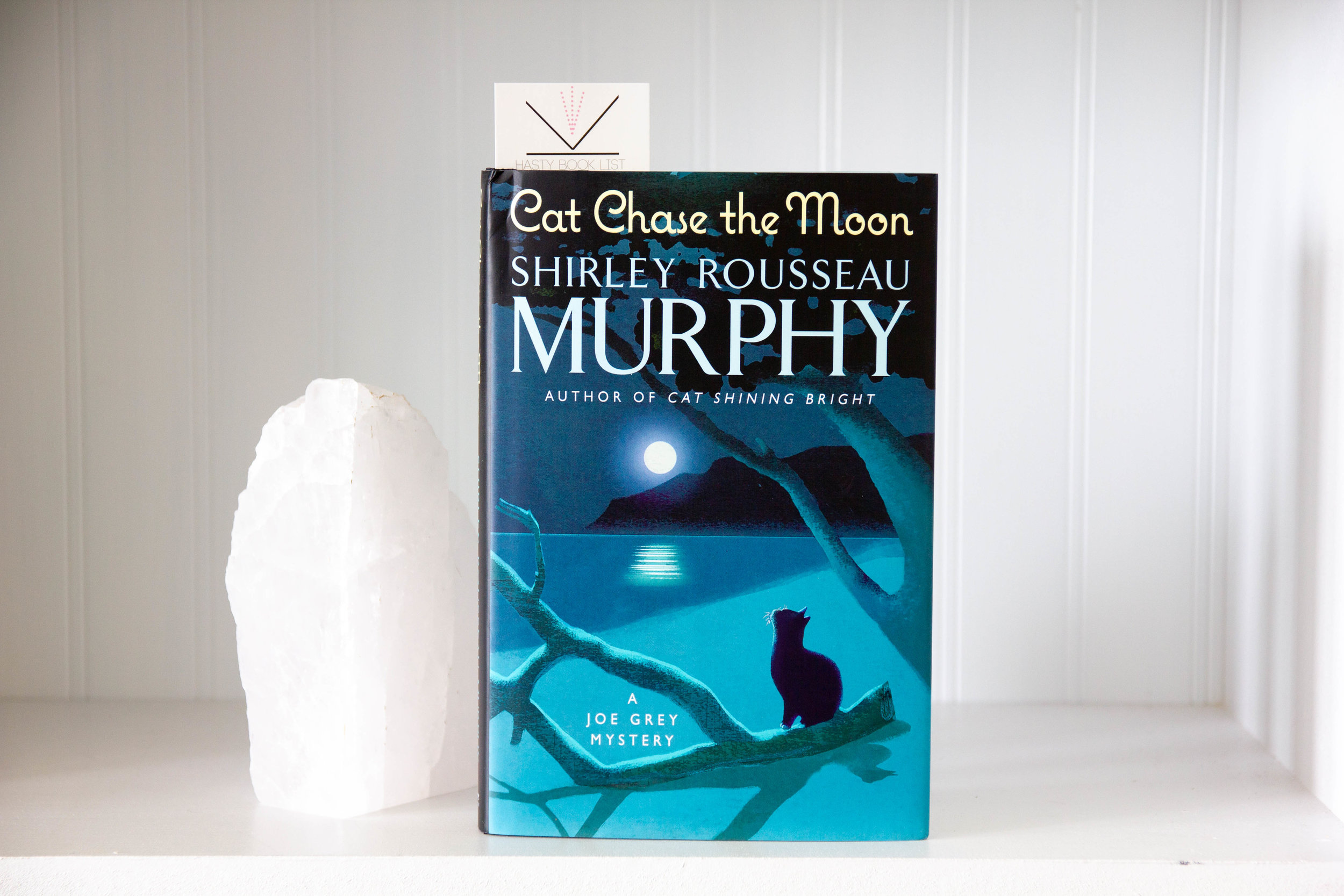 Book Feature - Cat Chase the Moon by Shirley Rousseau Murphy