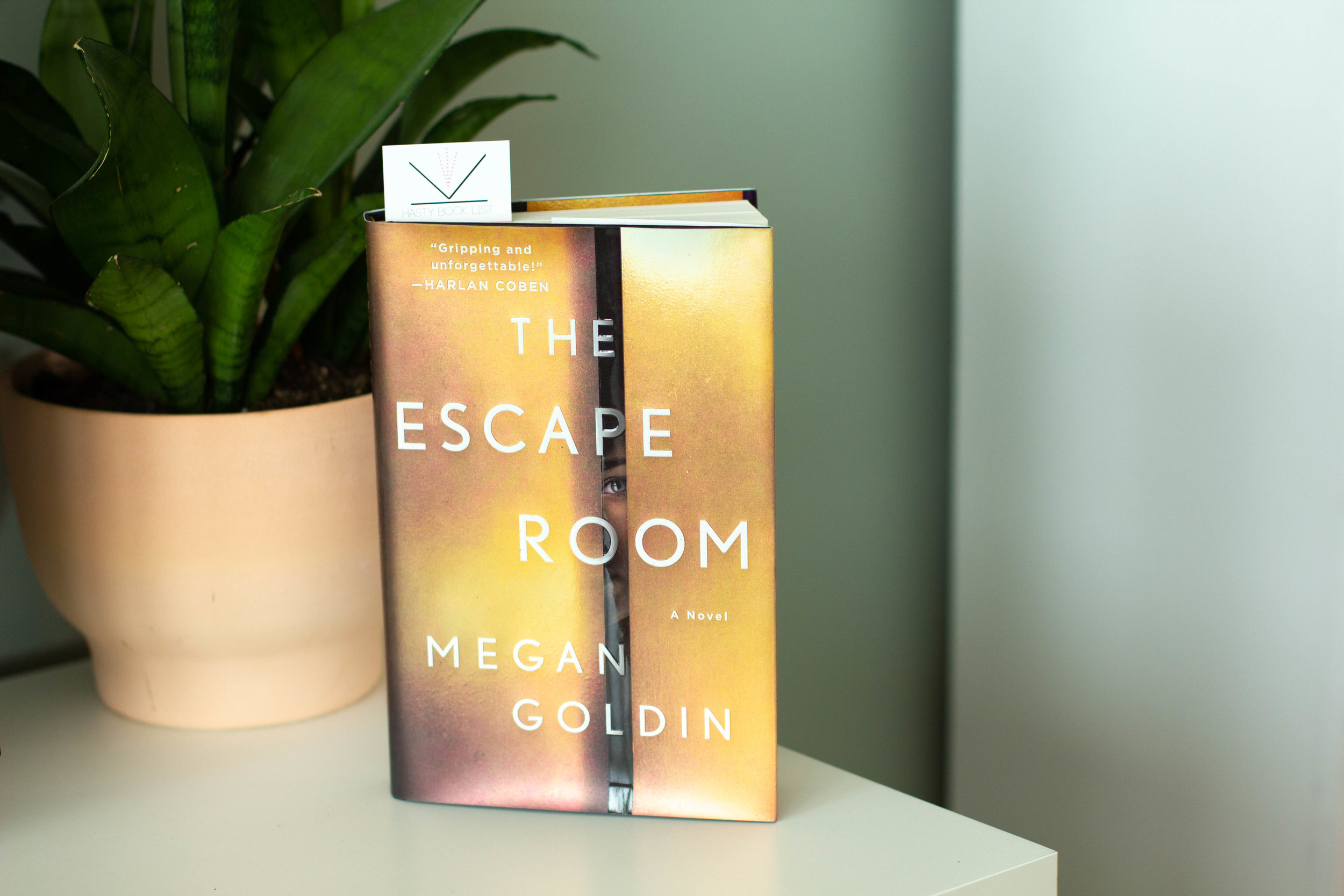 Book Feature - The Escape Room by Megan Goldin