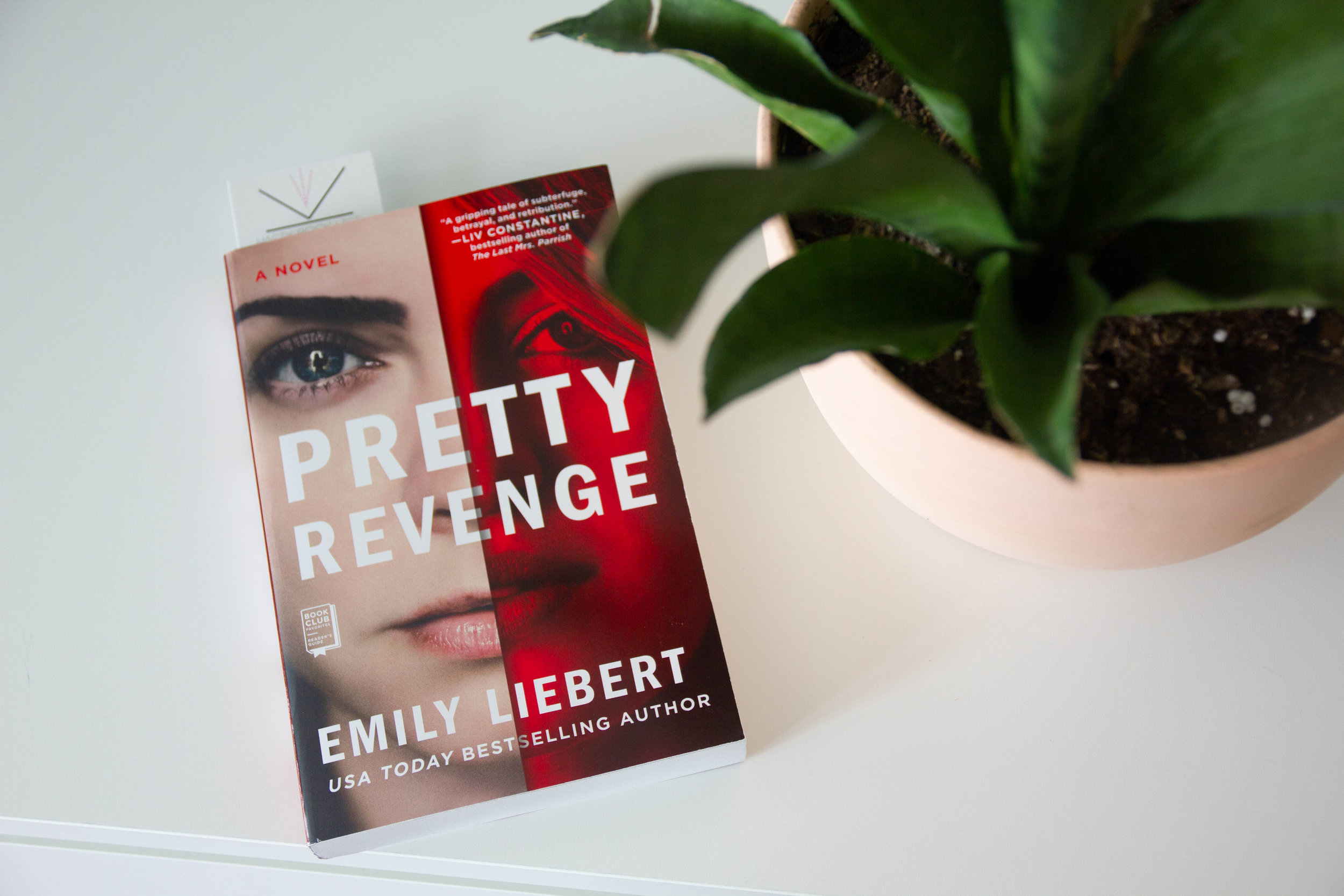 Pretty Revenge by Emily Liebert-3.jpg