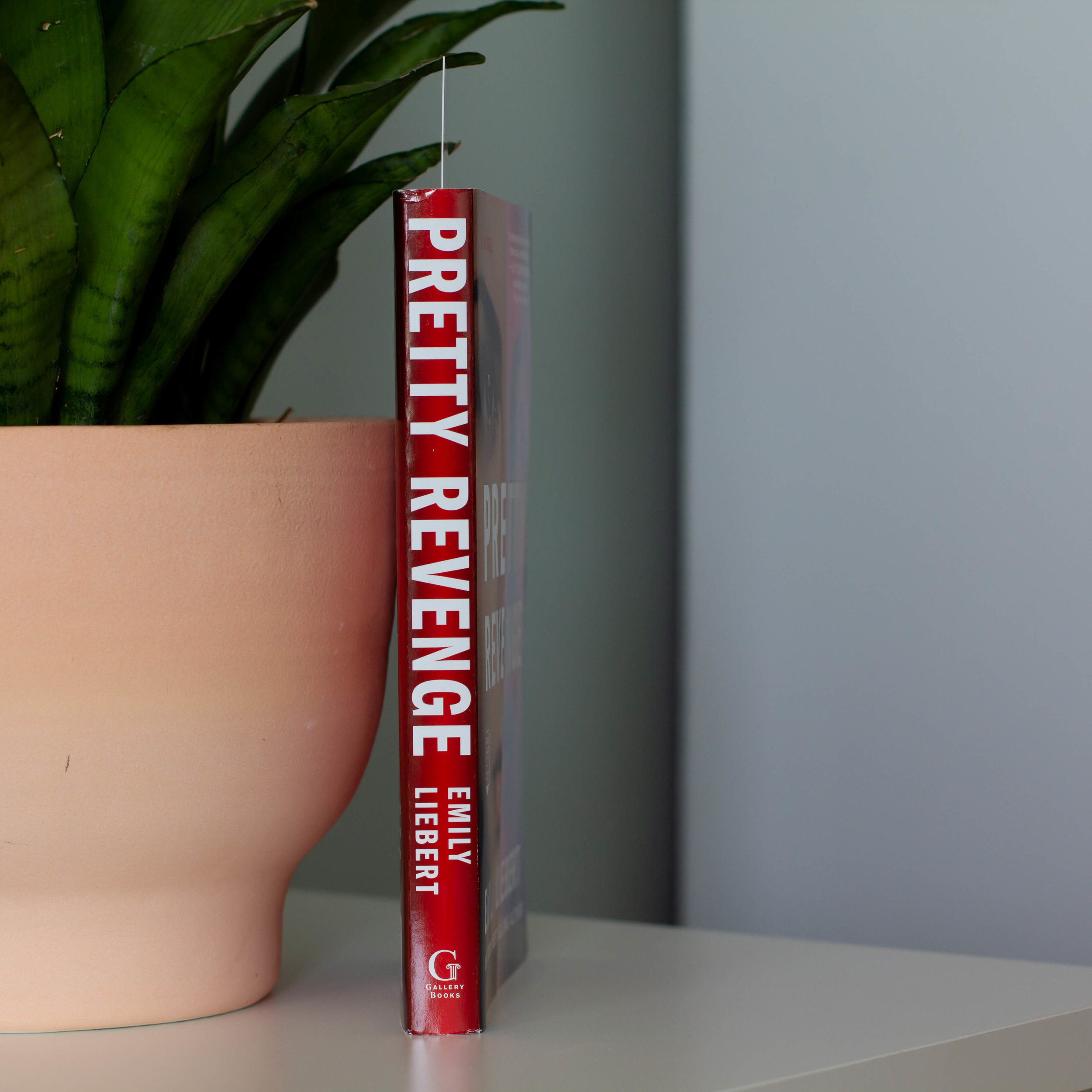 Pretty Revenge by Emily Liebert-2.jpg