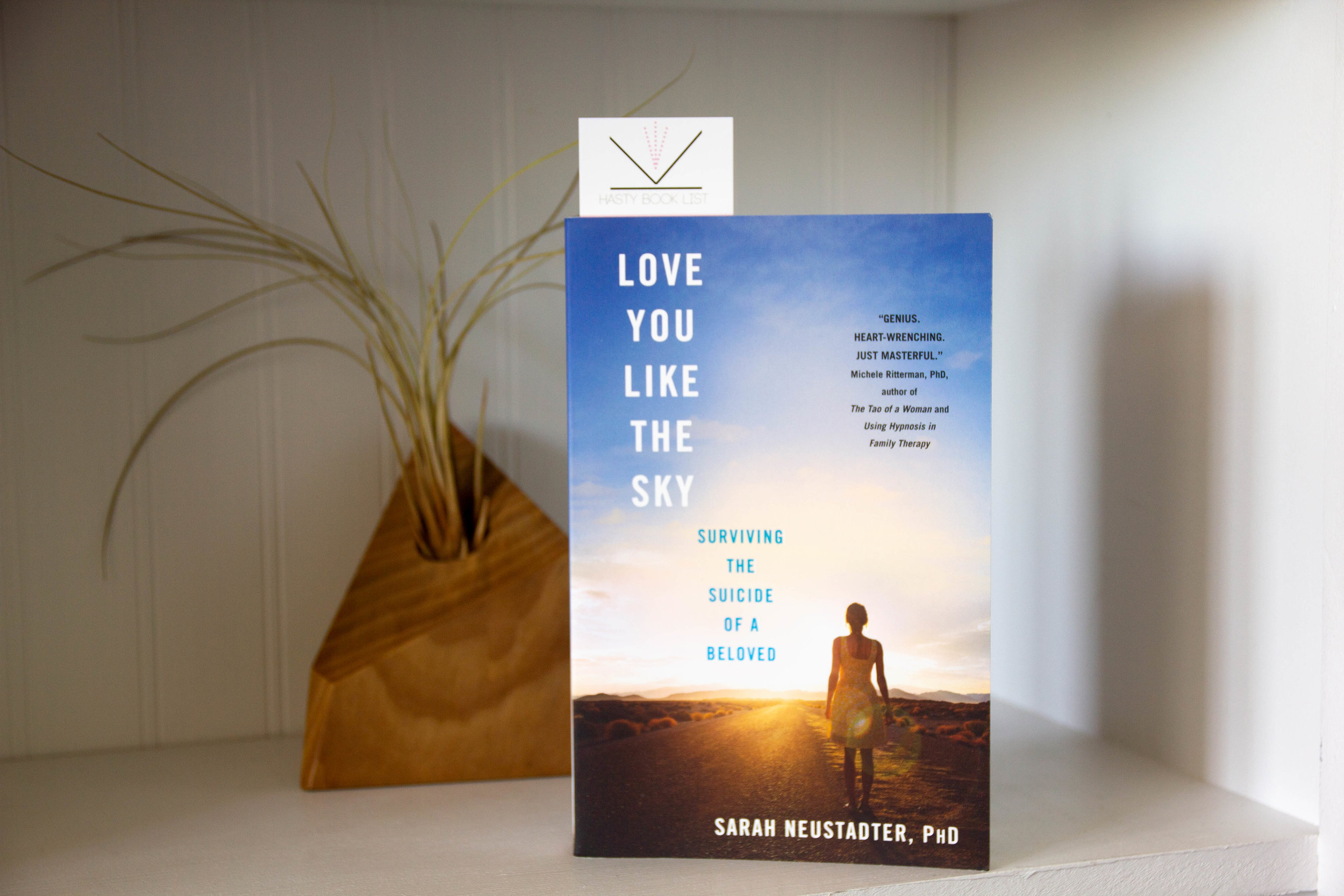 Book Feature - Love You Like the Sky by Sarah Neustadter