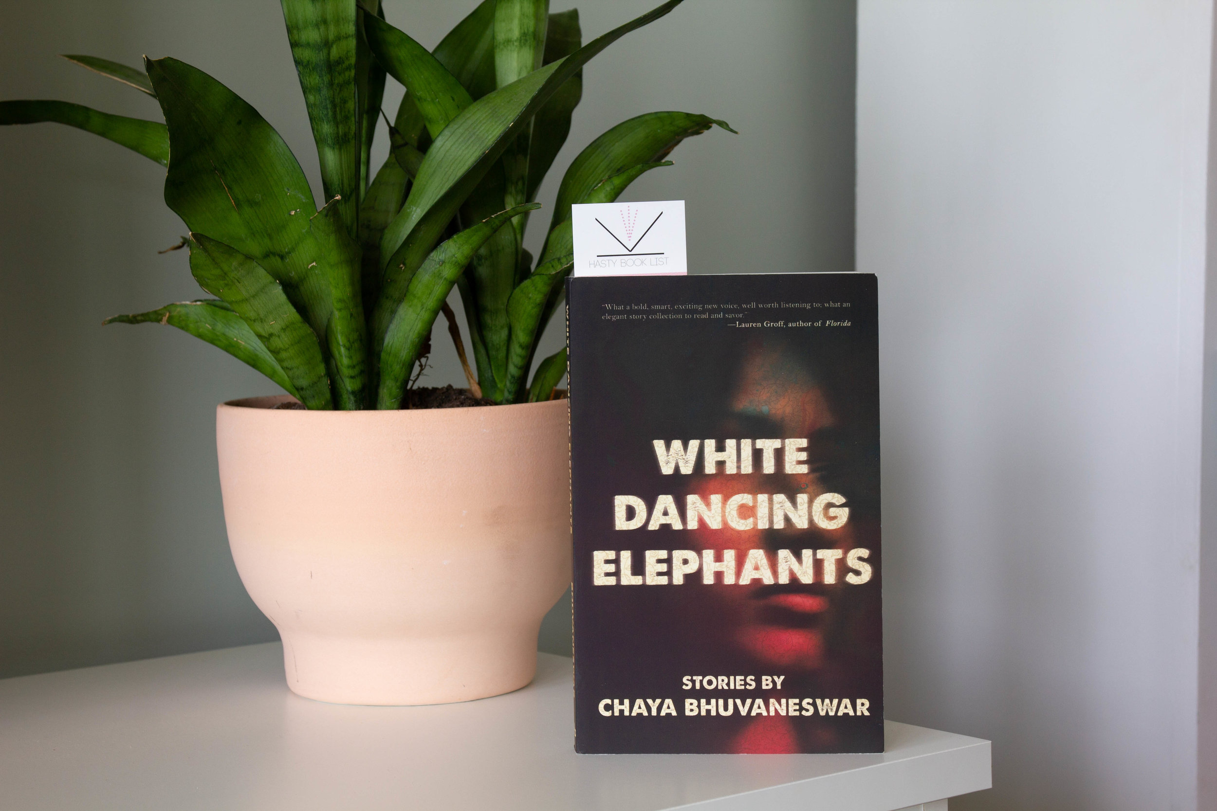 White Dancing Elephants by Chaya Bhuvaneswar - In seventeen remarkable stories, Chaya Bhuvaneswar spotlights diverse women of color—cunning, bold, and resolute—facing sexual harassment and racial violence, and occasionally inflicting that violence on each other.