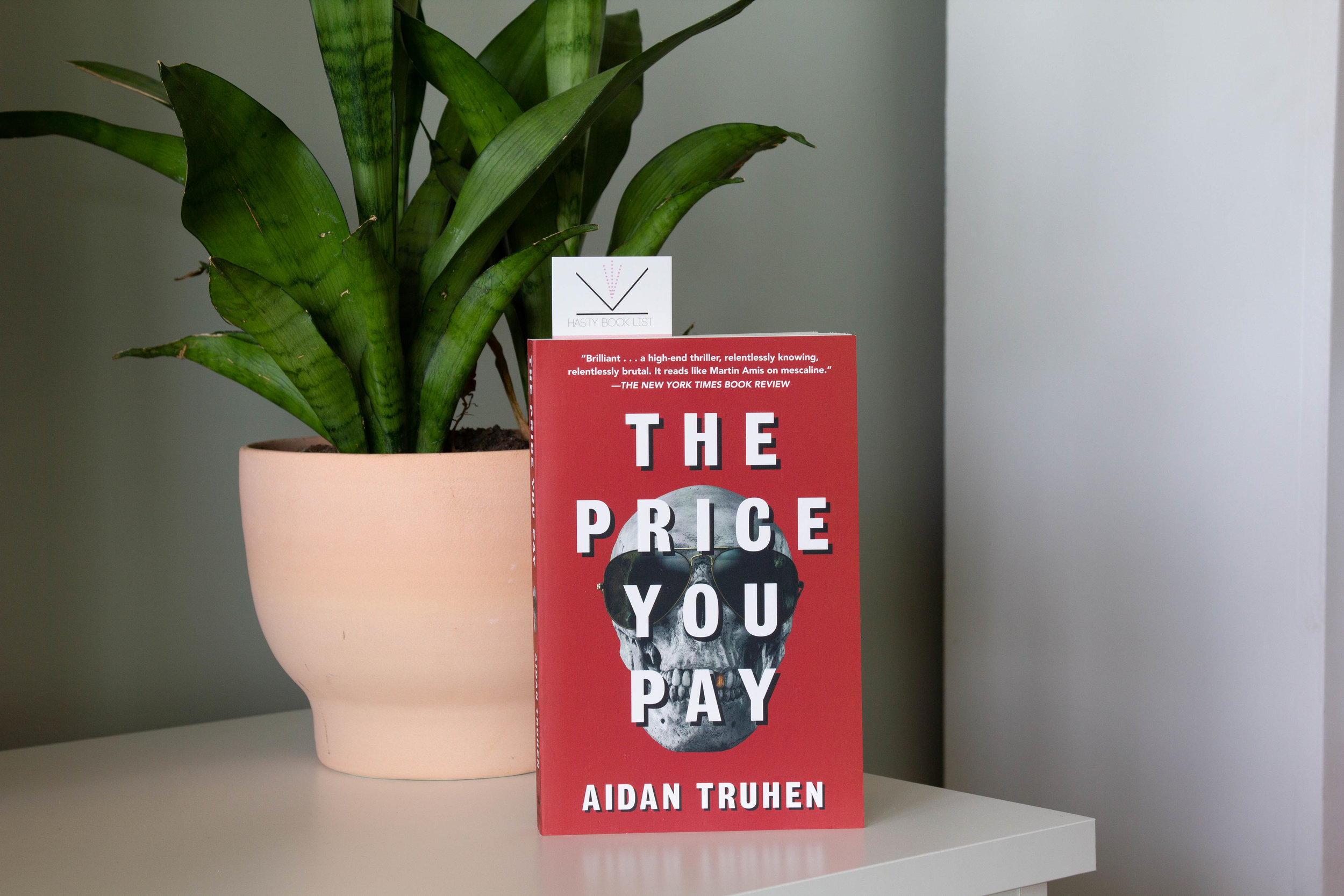 The Price You Pay by Aidan Truhen - In this audacious, lightning-paced thriller, a smart-mouthed, white-collar drug dealer--a hilariously irreverent antihero--seeks revenge when an unknown enemy takes out a contract on him.