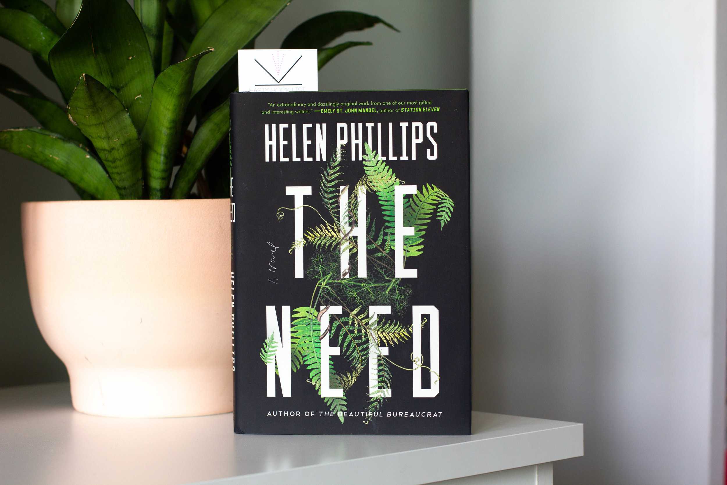 The Need by Helen Phillips - In The Need, Helen Phillips has created a subversive, speculative thriller that comes to life through blazing, arresting prose and gorgeous, haunting imagery. Helen Phillips has been anointed as one of the most exciting fiction writers working today, and The Need is a glorious celebration of the bizarre and beautiful nature of our everyday lives.