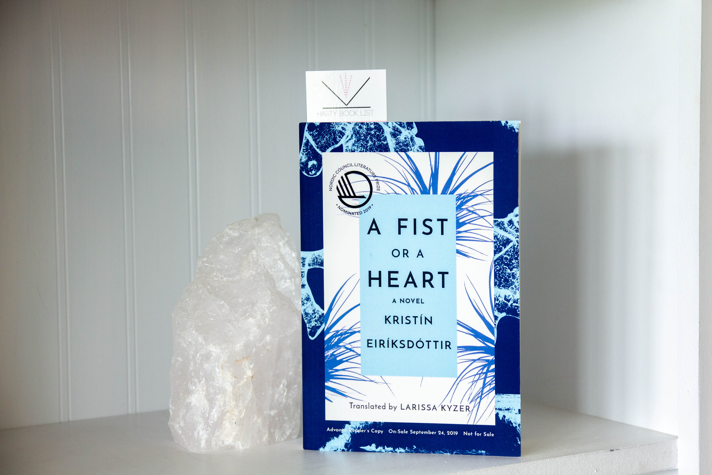 Book Feature - A Fist or a Heart