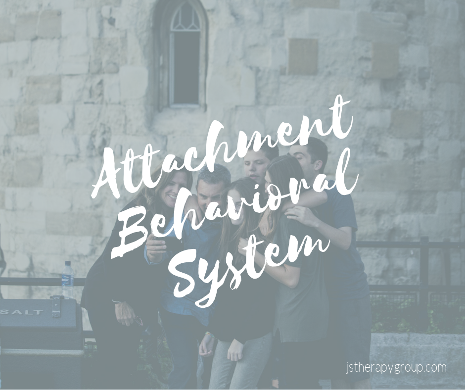 Attachment Behavioral System (1).png