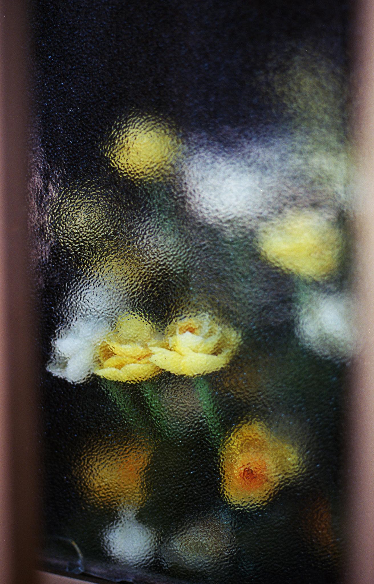 flowersthruwindowmock.jpg