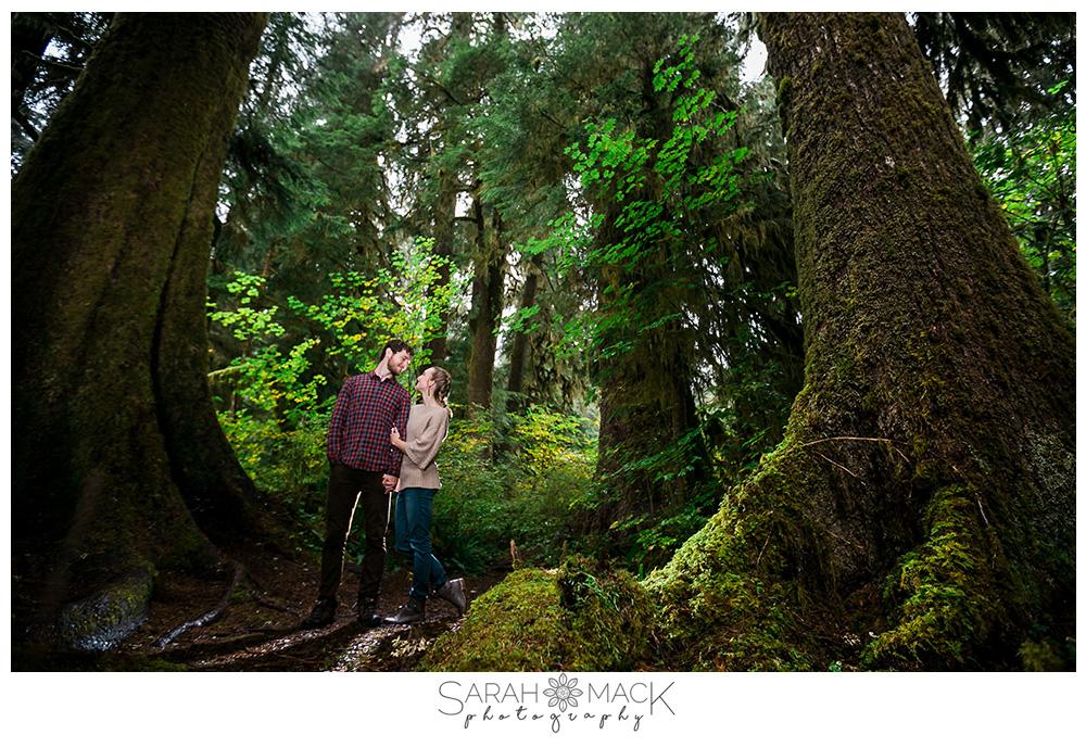 lr2-olympic-forest-washington-engagement-photography.jpg