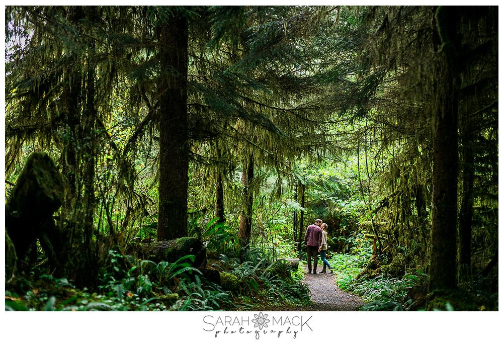 lr3-washington-olympic-national-forest-engagement-photography.jpg