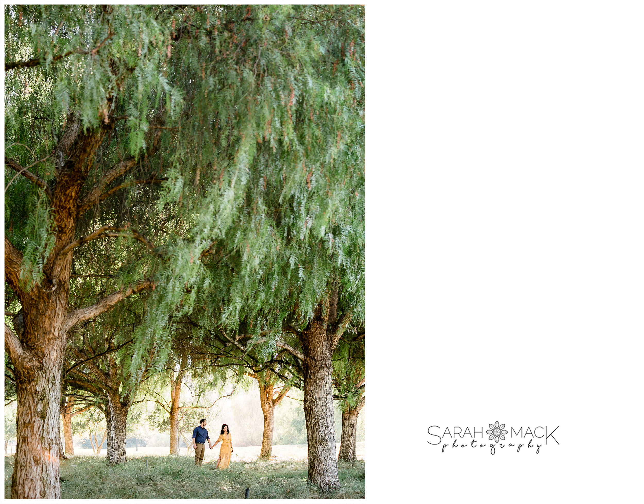 Quail Hill Engagement Photography