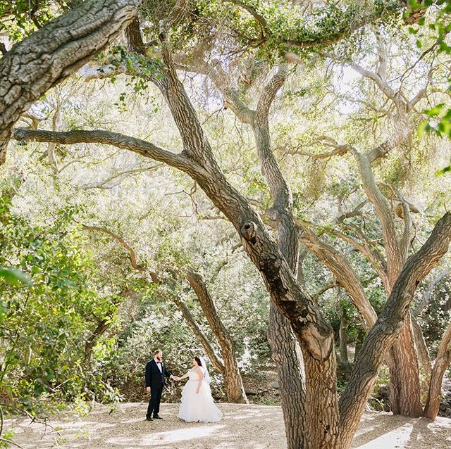 Alright Monday, Let's do this.  Started the week off with sleeping in a bit to treat myself. Enjoying a nice coffee and reminiscing about this dreamy ceremony location right here in OC. Venue: Oak canyon Nature Center  Planner @e.c.events Photo @sarahmackphoto Beauty @infinitebeautyla Rolls Royce: @byrdlimousines Catering @jayscatering DJ @voxdjs