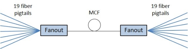 MCFFO_OrderExample2.jpg