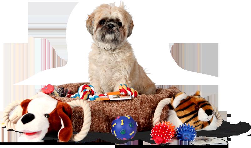 discount-pet-supplies.png