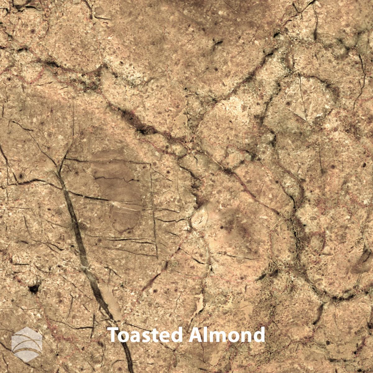 Toasted Almond_V2_12x12.jpg