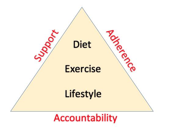 Fat loss model