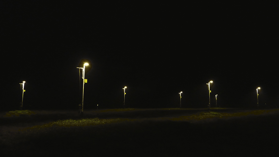 Figure 4:    Experimental field to study effects of artificial light at night in a rural setting in Westhavelland (Brandenburg), Germany