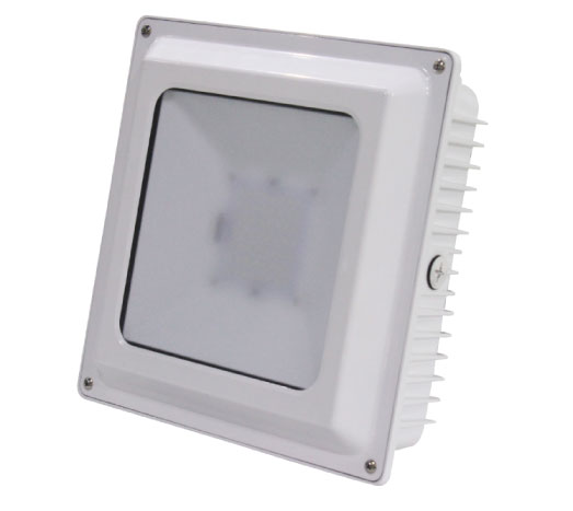LED Smail Canopy Light