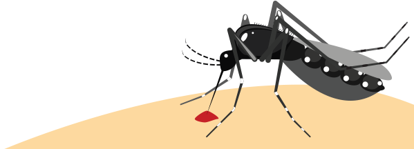 zika-prevention.jpg