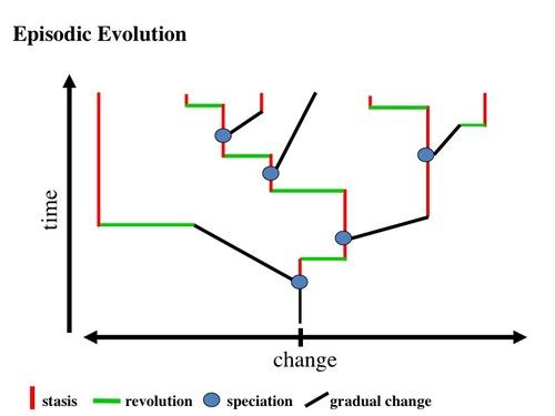 Episodic evolution