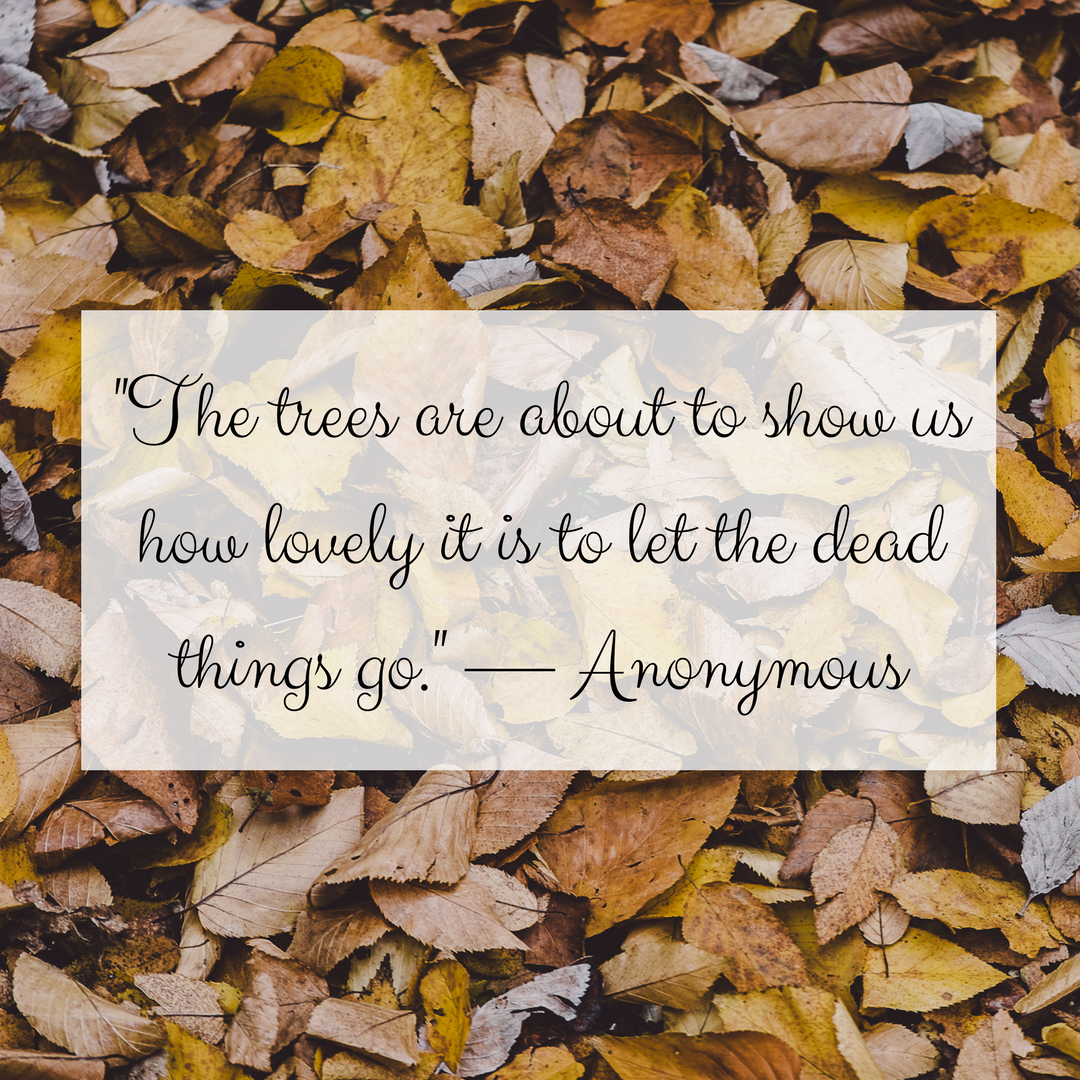 -The trees are about to show us how lovely it is to let the dead things go.- — Anonymous.png