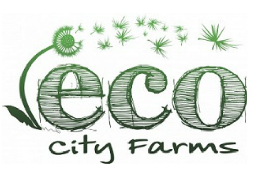 ECO City Farms    -  prototype for sustainable local urban farming to enhance food security, safety and access, to improve nutrition and health, to preserve cultural and ecological diversity, and accelerate the transition to an economy based on preservation, recycling, and restoration   Programs : Urban farming; Farmer training; Composting; Microgreens; Youth Education (SEED2FEED); Nutrition Education and Cooking; CSA/ Farm Share; Advocacy for food security and sustainable farming