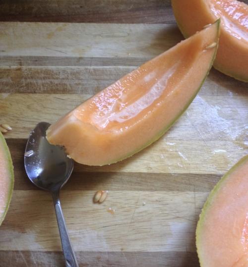 melon sorbet cantaloupe