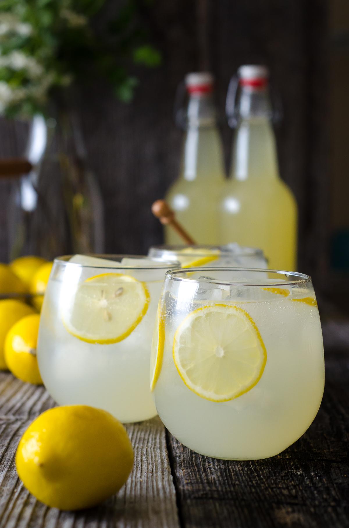 Fermented Probiotic Lemonade Soda
