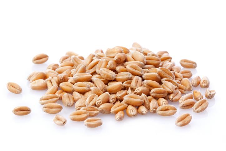 hulled wheat.jpg