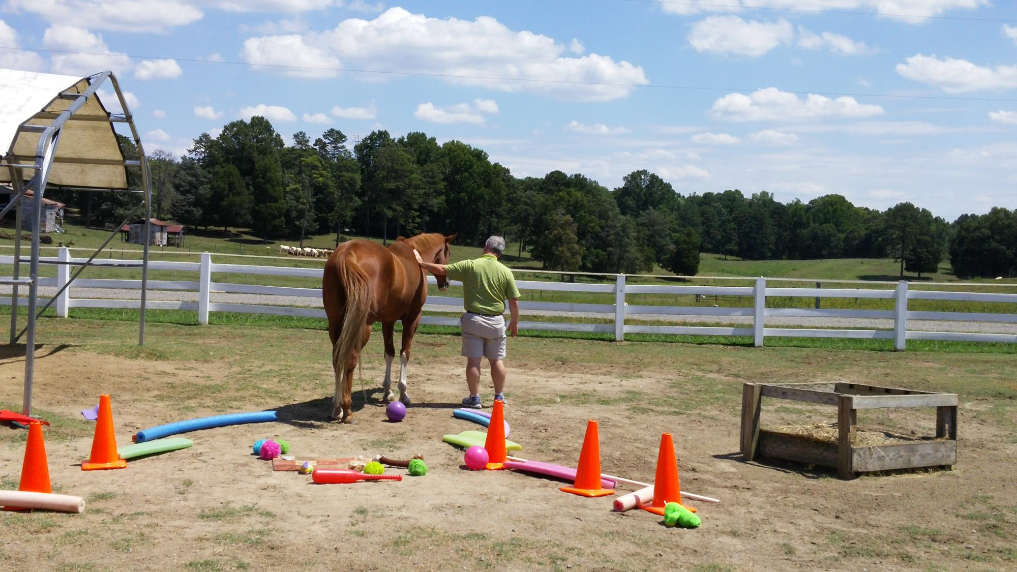 Equine_Assisted_Coaching.jpg