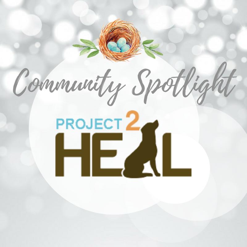 Community Spotlight (2).png
