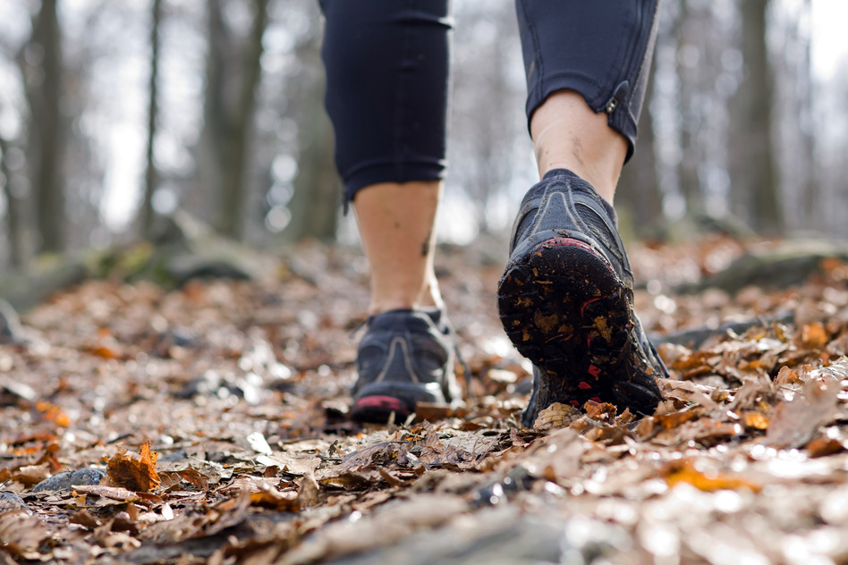 photodune-803296-woman-walking-in-autumn-forest-s.jpg