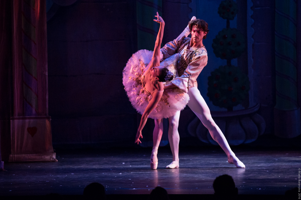 Ballet Etudes Company Guest Artists