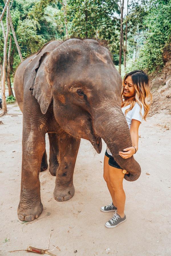 Patara-Elephant-Farm-14-of-16-600x898.jpg