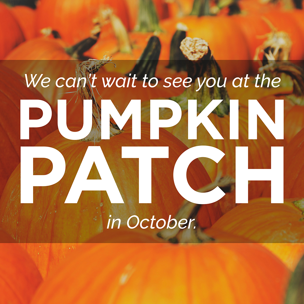 sm_pumpkin_patch-2017_web.jpg