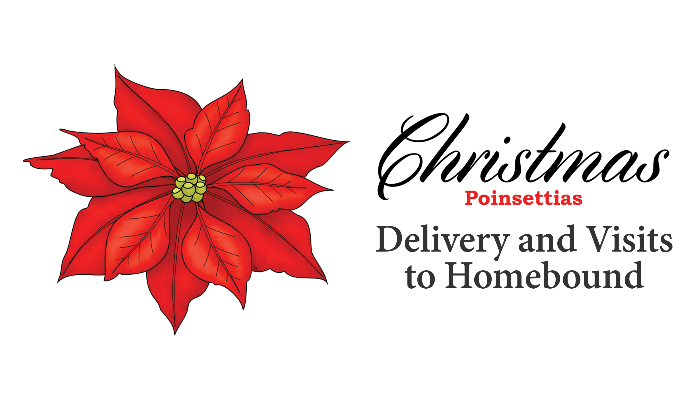 screen_poinsettia_delivery_2018.jpg