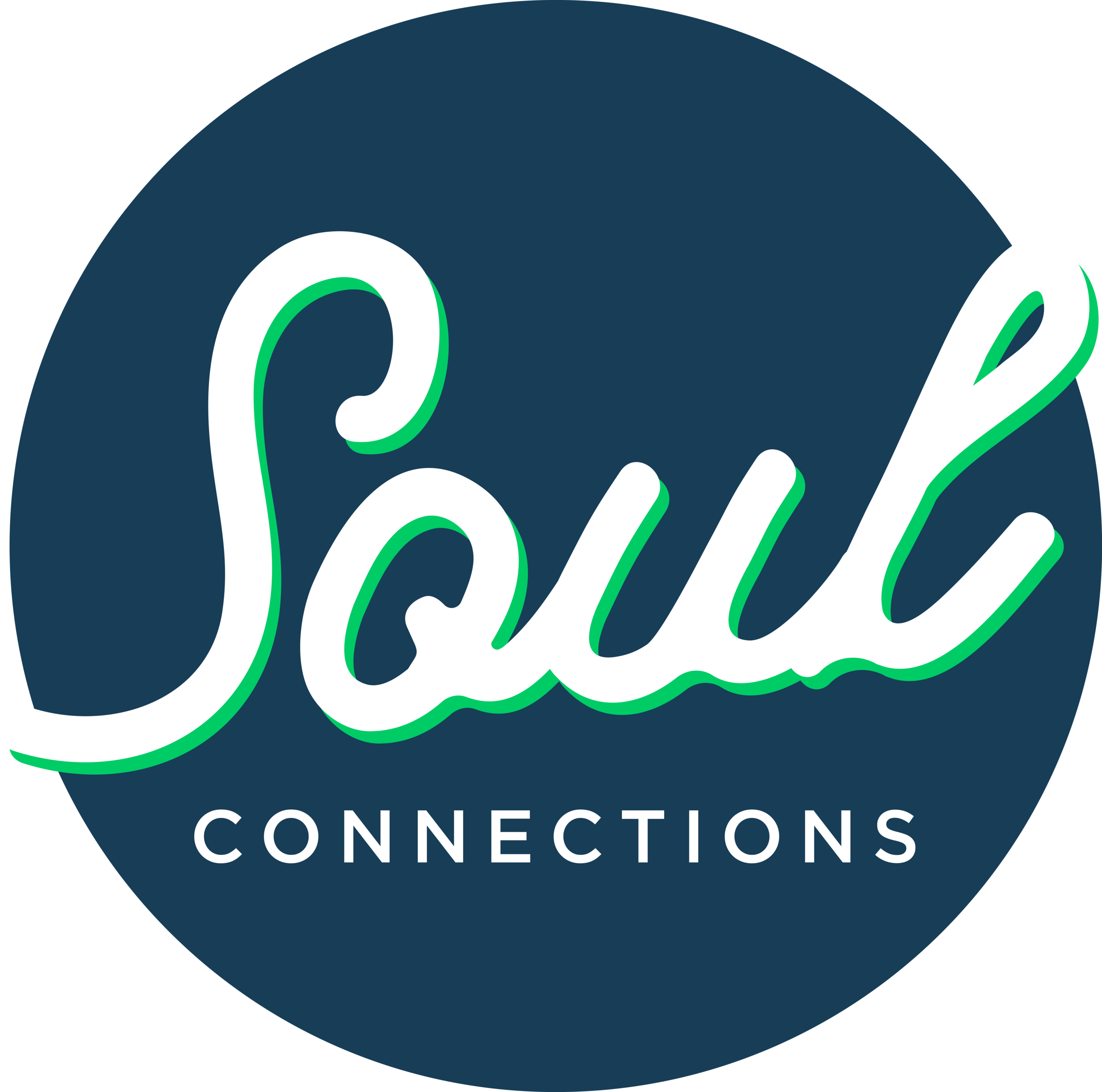logo_soul_connections.png