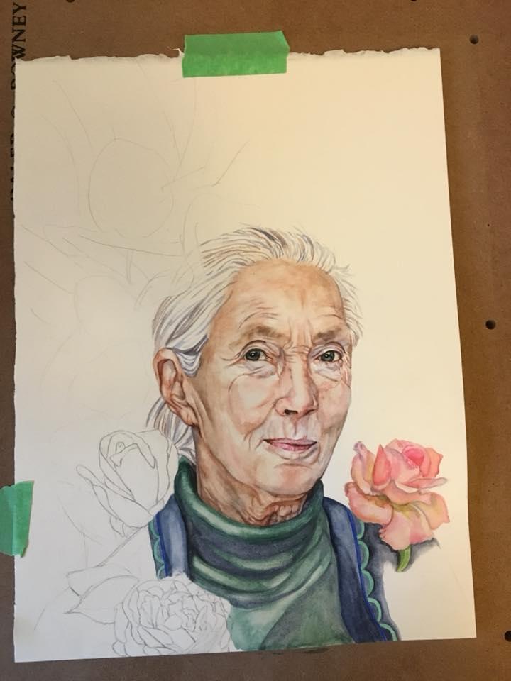 Josianne Dufour_wip3_portrait_JaneGoodall