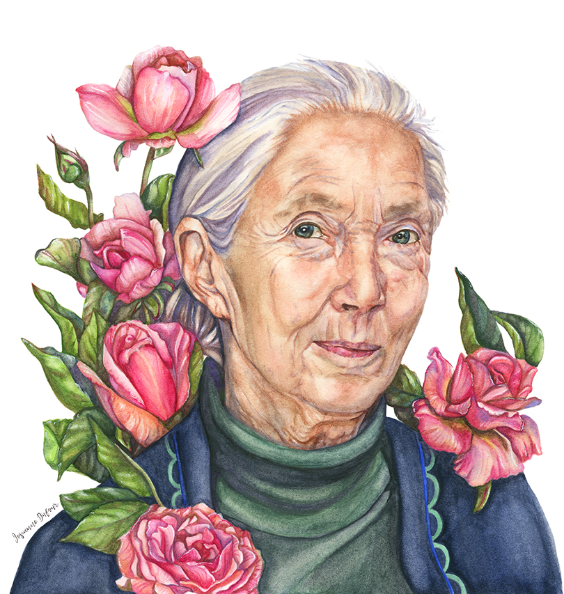 Portrait of Jane Goodall with Jane Goodall roses