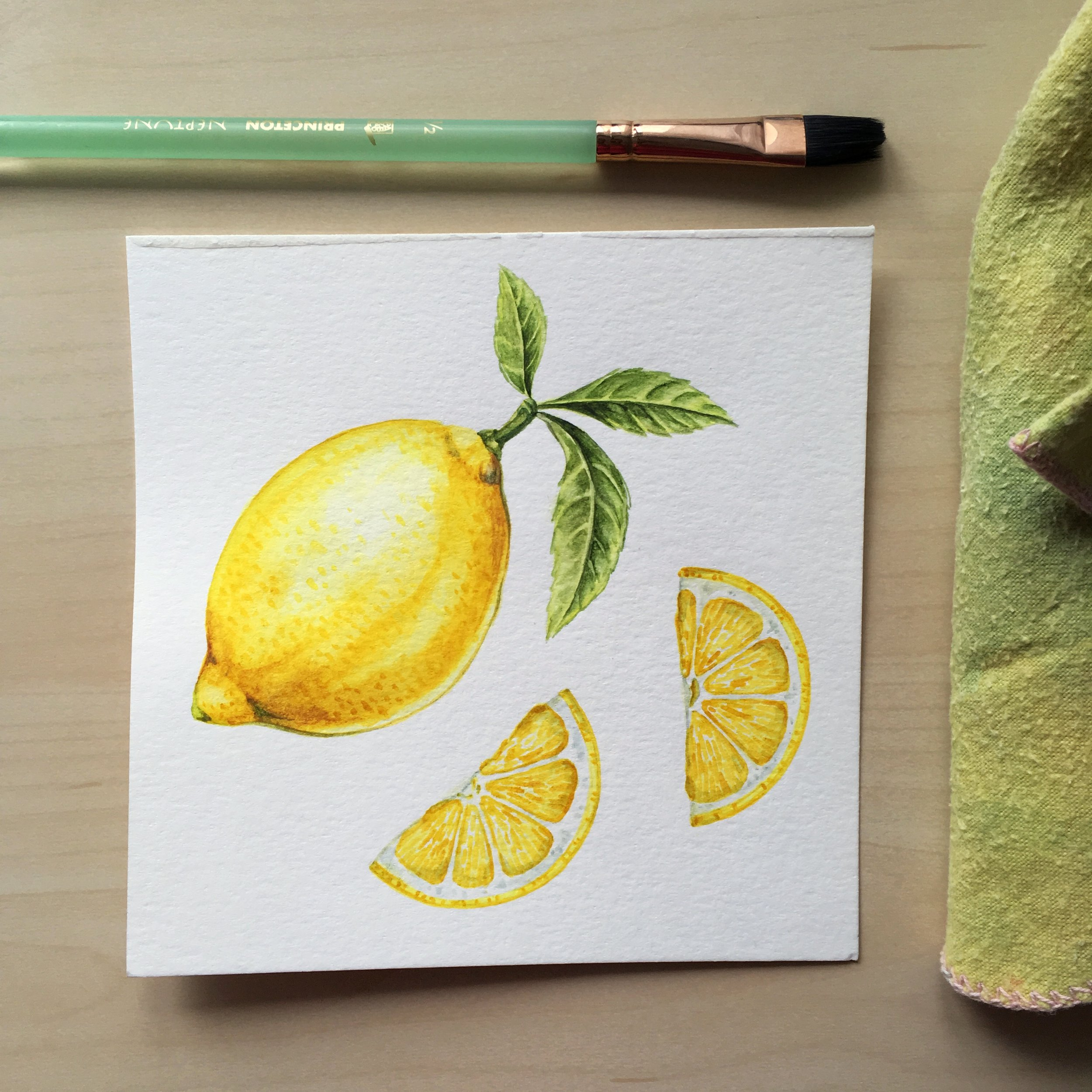 JosianneDufour_lemonillustration_botanical_food.jpg