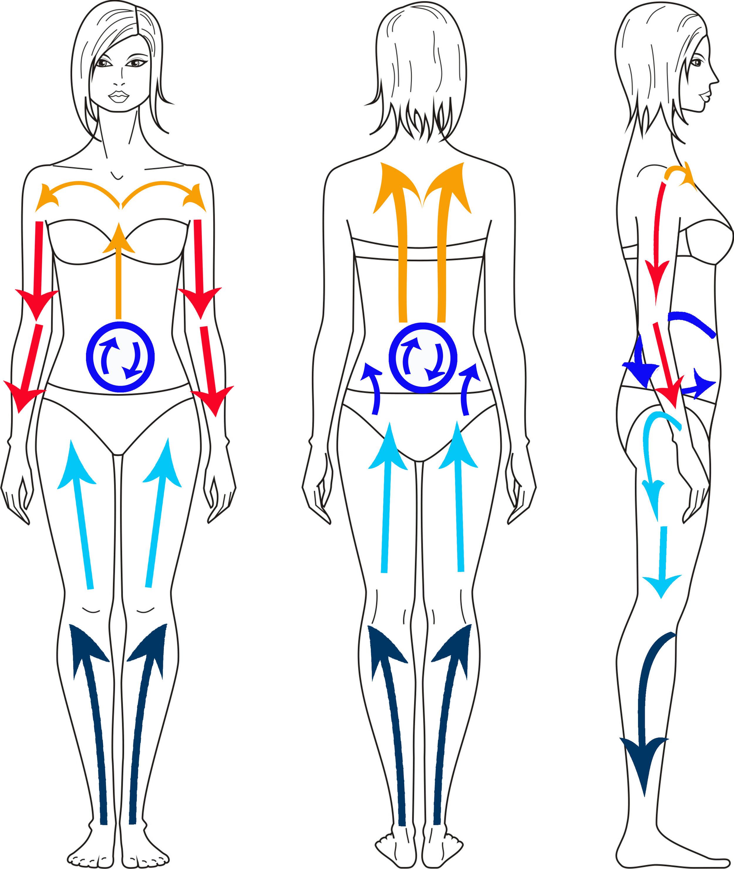 female-form-illustration.jpg