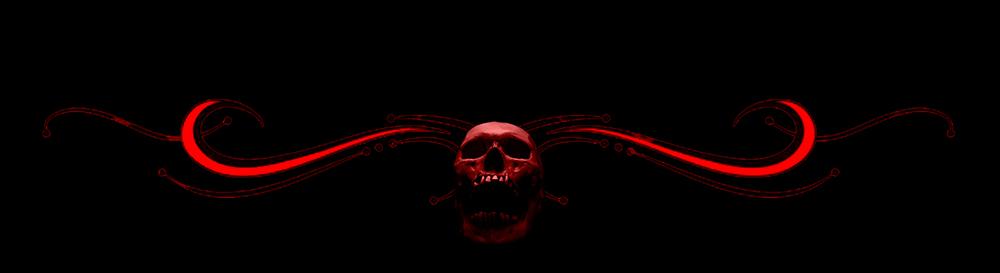 End-Skull-LWIH-SMALL-BANNERS.jpg
