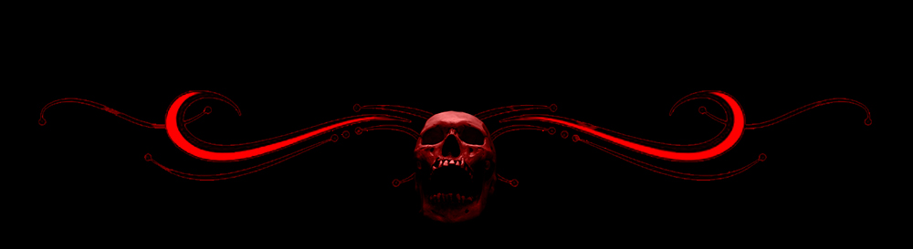 End-Skull-LWIH-SMALL-BANNERS.jpg