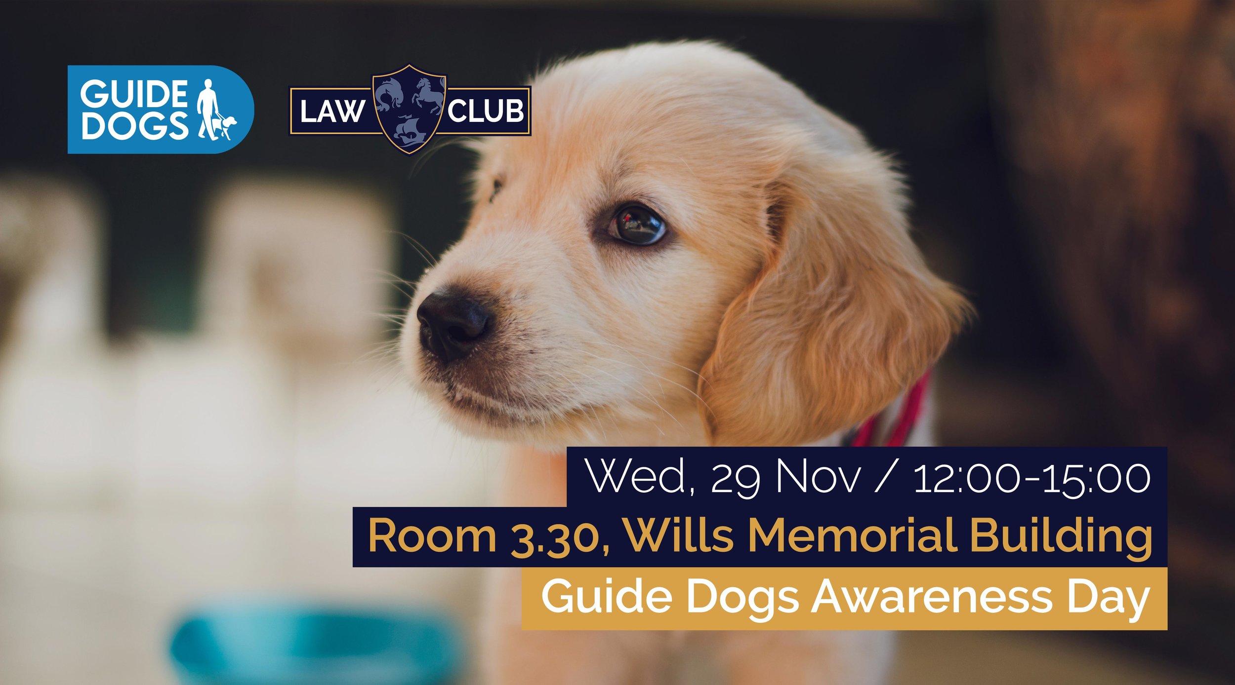 guide dogs awareness day.jpg