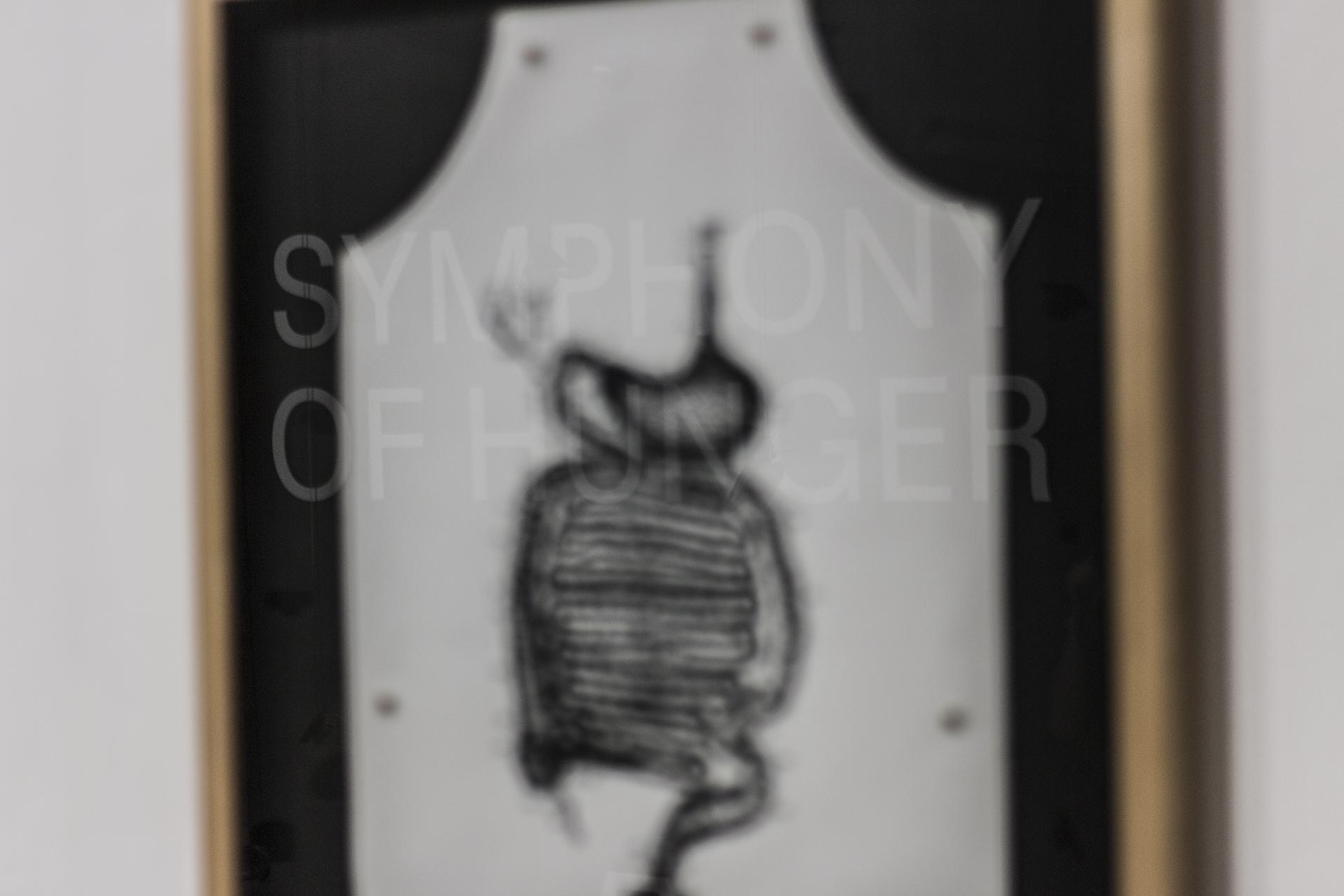 Install Image - George Maciunas 'Anatomy Apron' - Symphony of Hunger at A plus A Gallery 2015 (photo credit Kerem Guman).jpg