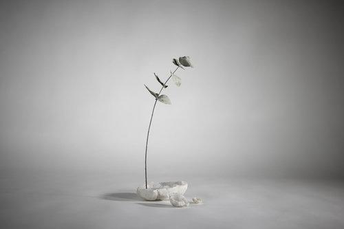 Fleur de Quartz, Stéphane Guiran. Tous droits réservés.