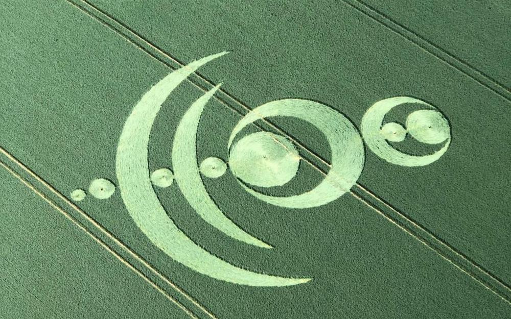 crop circle 2019 val d oise virginie lascension.jpg